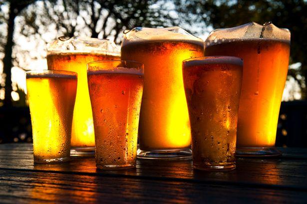 pivní království